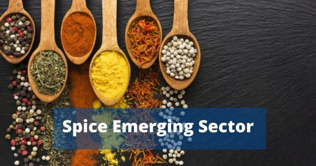 Spice Business in India