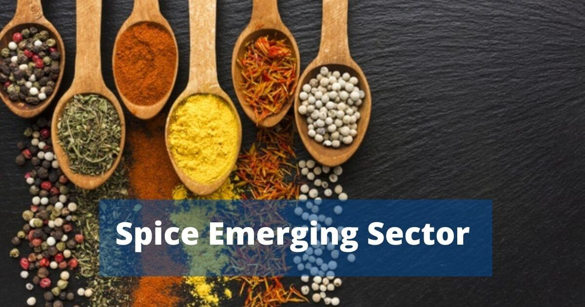 Spice Business in India: Emerging Sector in Recent Time