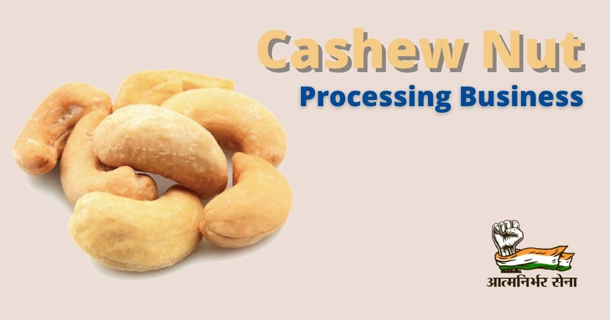 Cashew Nut Processing Business in India – A Business of All Seasons