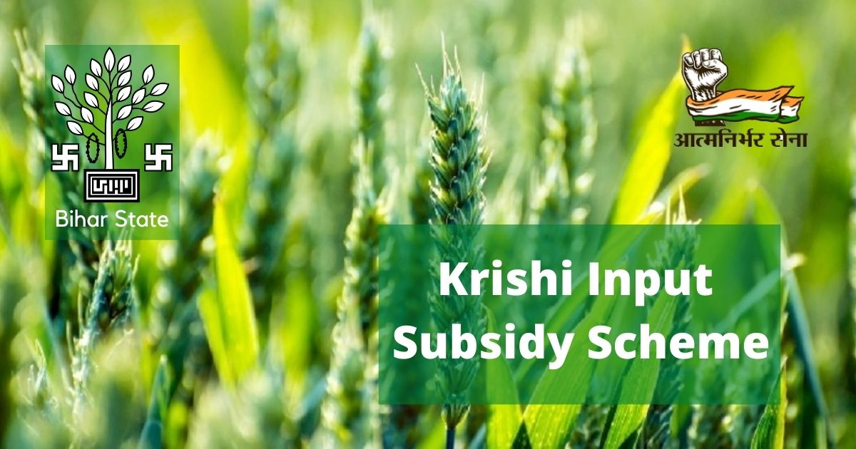 Krishi Input Subsidy Scheme: A Boon for the Agriculture Sector