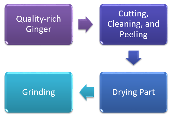 Ginger Powder Production Business- Process in Detail
