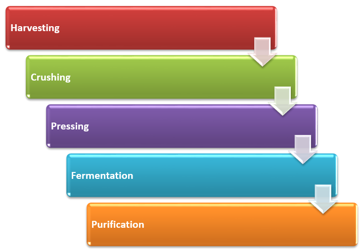 process of the Grape wine production business