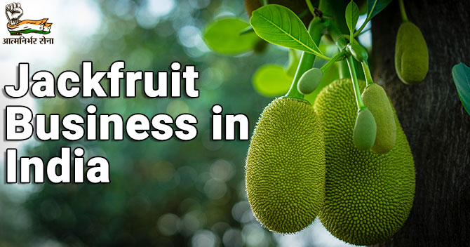 Jackfruit Business in India: A Pleasant Business in Food Industry