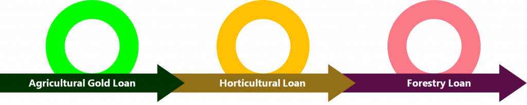 Other Loan Types
